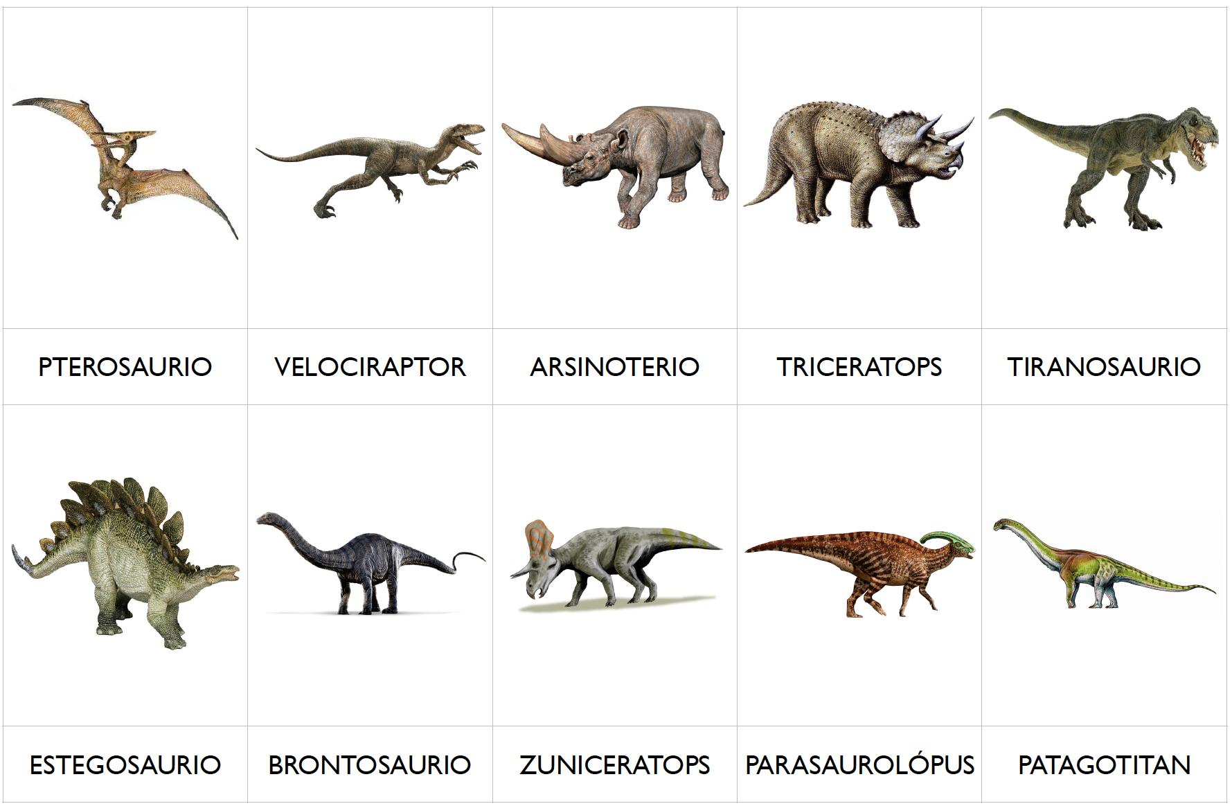 Tarjetas Montessori De 3 Partes Clasificacion Comun Dinosaurios Para Imprimir Montessoris Arte 'lagartos terribles') son un grupo de saurópsidos que aparecieron durante el período triásico. tarjetas montessori de 3 partes